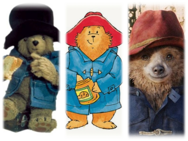 the evolution of paddington