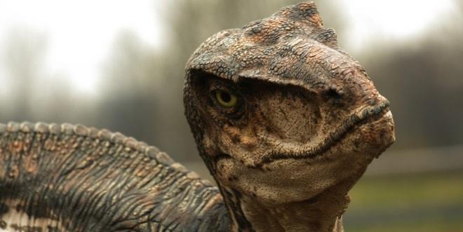raptor jurassic world